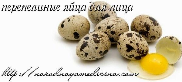 перепелиные яйца для лица