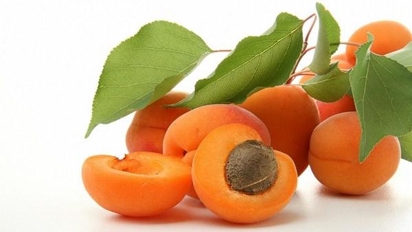 Масло абрикосовых косточек свойства