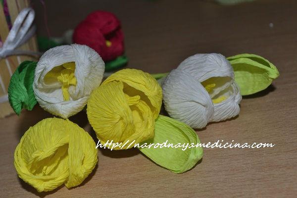 цветы крокусы из гофрированной бумаги