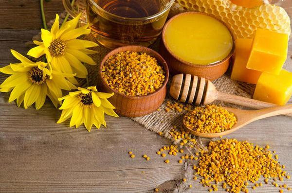 пчелиная пыльца полезные свойства и применение