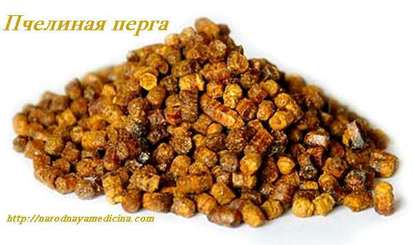 пчелиная перга применение