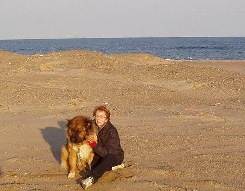 на берегу Охотского моря