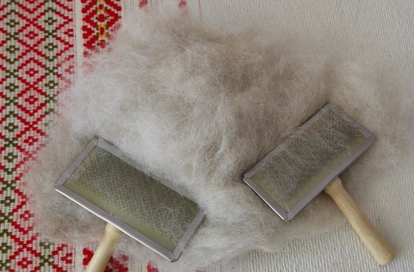 собачья шерсть и щетки для расчесывания собак