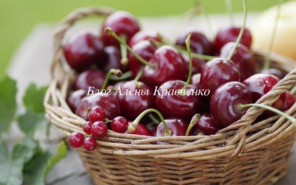 Вишня польза и вред для здоровья