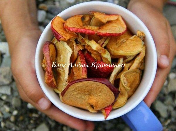 Сушеные яблоки - польза и вред