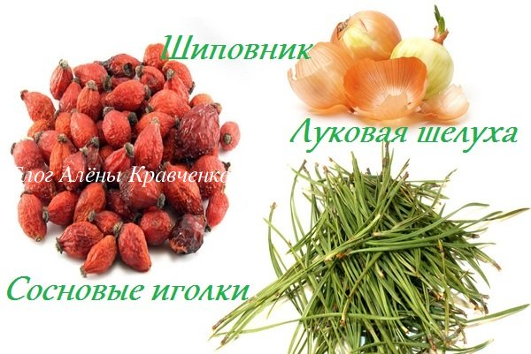 Сосновые иголки лечебные свойства