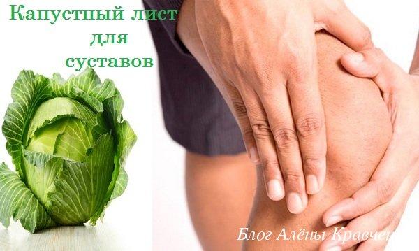 Капустный лист от боли в суставах