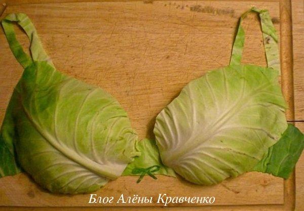 Капустный лист при мастопатии