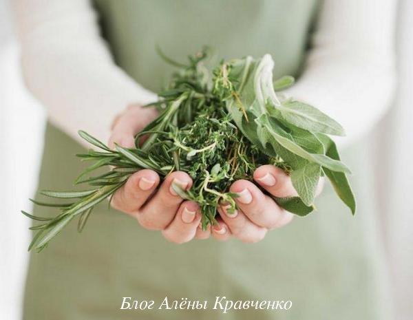 Травы для суставов
