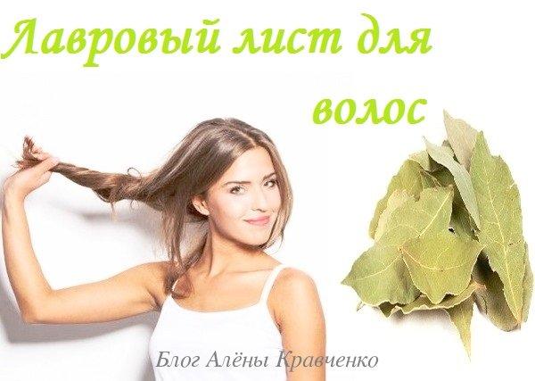 Лавровый лист для волос