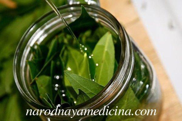 Лавровый лист на растительном масле при судорогах