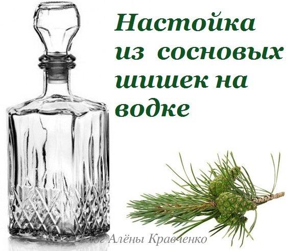 Настойка из сосновых шишек на водке