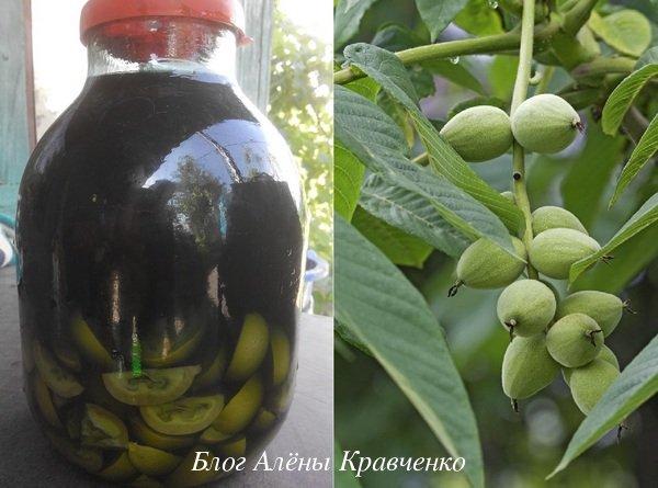 Настойка грецкого ореха на водке