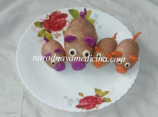 Поделка из овощей поросята