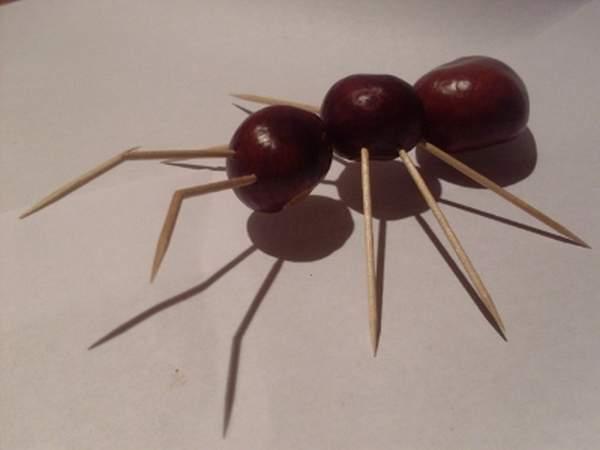 Поделка муравей из каштанов