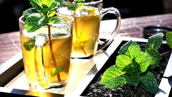 мятный чай польза