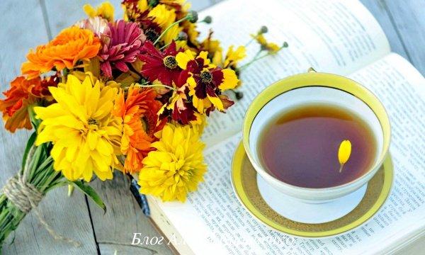 Чай при простуде